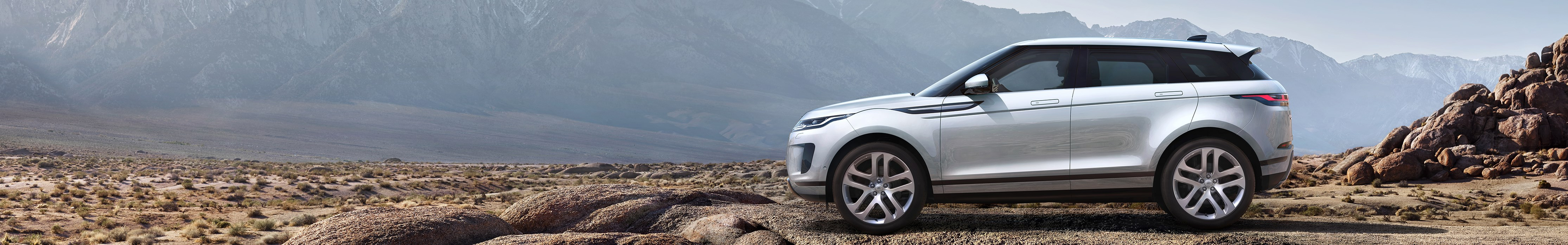 Evoque in der Natur